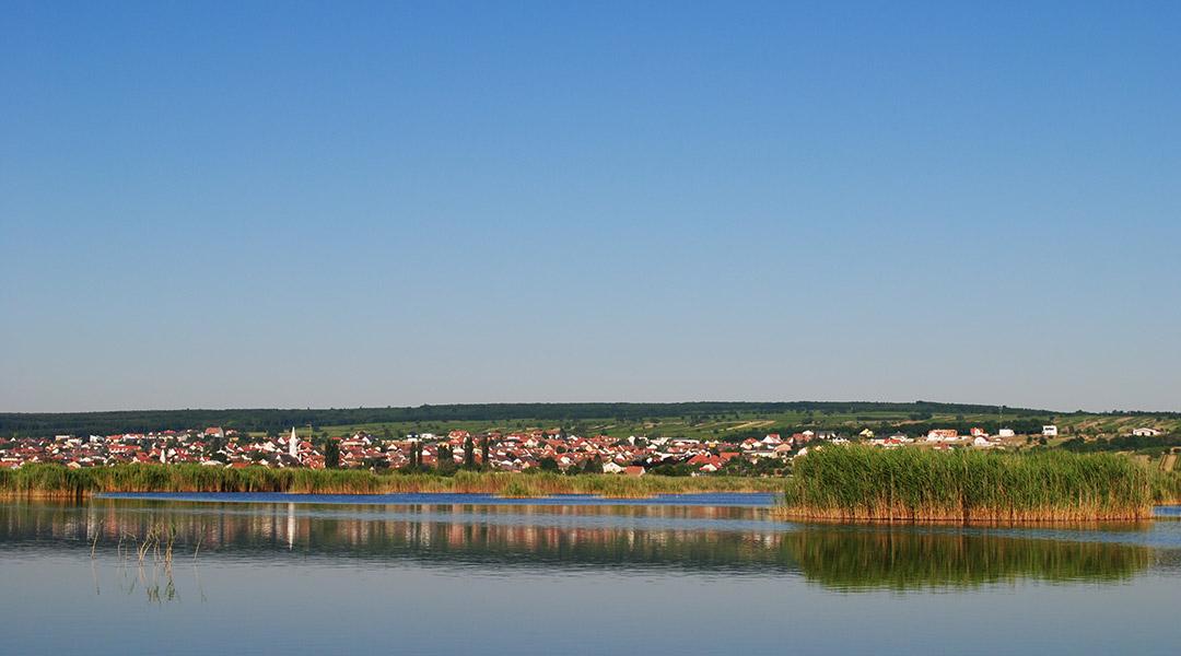 Slide Neusiedler See