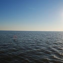 Der Neusiedler See